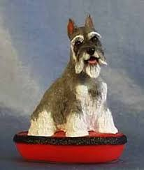 4758 best pets images on schnauzers miniature