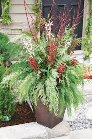 Christmas Outdoor Decor by Best 25 Outdoor Christmas Planters Ideas Only On Pinterest