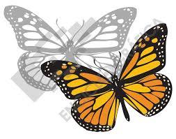 imagenes de mariposas faciles para dibujar mariposa monarca plantilla para stencil