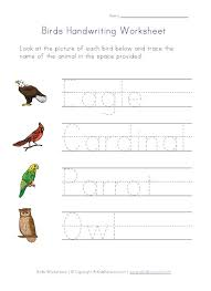 26 best bird unit study images on pinterest teaching ideas bird
