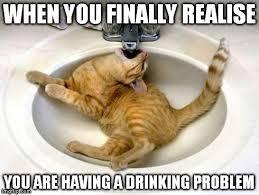 Drunk Cat Meme - drunk cat imgflip
