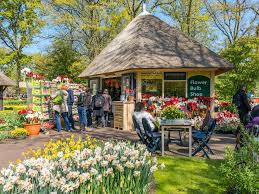 keukenhof flower gardens flower bulb gift shop in keukenhof gardens holland u2013 stock