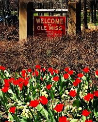Ole Miss Campus Map Pre Pharmacy Program Application