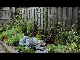 how to create a vegetable garden youtube