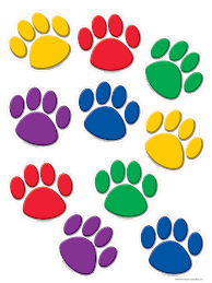 accent colors colorful paw prints accents tcr4114 teacher created resources