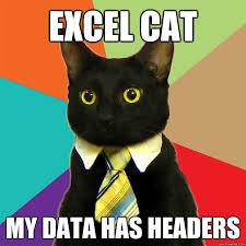 What Is A Meme Exle - excel cat my data cat meme cat planet cat planet