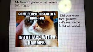 Appropriate Memes For Kids - grumpy cat memes appropriate pictures youtube