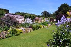 Photo Flower Garden by The Meaning Of The Dream In Which You Saw Garden