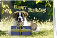 birthday cards with bernards from greeting card universe