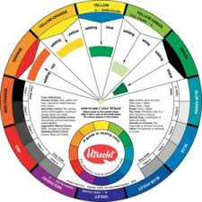 color wheel paint for your home inspirations