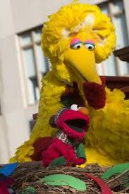 keeping up with the race for office big bird sesame streets