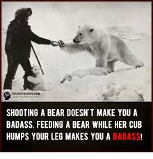 Truth Bear Meme - truththeory com keep your mind open shooting a bear doesn t make you