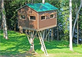 best treehouse designs ideas home decor inspirations