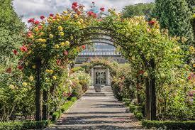 New Zealand Botanical Gardens Garden In The Botanic Gardens Stock Photo Image Of Island