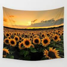 Sunflower Themed Bedroom 12 Best Images About Future Buys On Pinterest