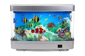 Aquarium For Home by Aquariums Amazon Com Marine Aquariums Fish Tanks U0026 Saltwater