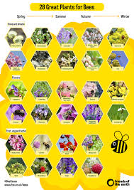 Patio Fruit Trees Uk by 28 Great Plants For Bees Friends Of The Earth