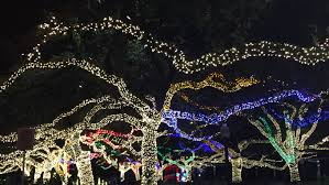 when do the zoo lights end top 5 places for houston christmas lights it s not hou it s me