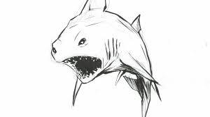 shark week bamboo shark by lazypockystick109 on deviantart
