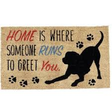 Mud Rugs For Dogs Best Doormat For Dogs 2017 Reviews