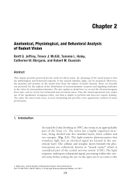 anatomical physiological and behavioral analysis of rodent