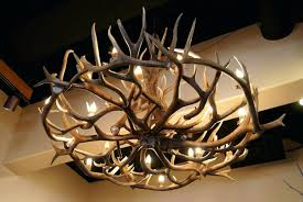 home interior deer pictures chandelier chandeliers chic deer antler chandelier about home