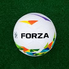 forza backyard soccer ball net world sports