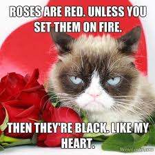 Grumpy Cat Meme Valentines Day - 614 best memes images on pinterest funny things too funny and