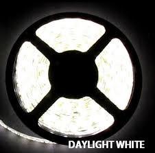 led daylight strip light 5050smd daylight white flexible led light strip 16 ft reel kit non