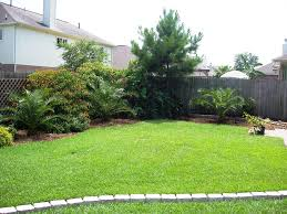 Backyard Plus Backyard Corner Is Planted With Some Tropical Plants Plus A