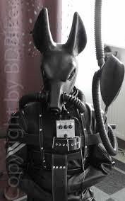 Gas Mask Costume Gayromeoanubiswrebreather Jpg