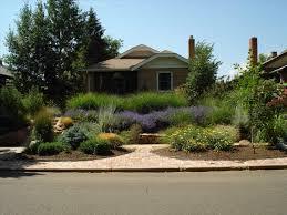 california backyard backyard xeriscape ideas sustainablepals org