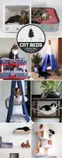 Homemade Cat Hammock by 18 Best Katt Images On Pinterest Diy Cat Furniture And Cat Room
