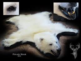 chris rawn taxidermy u0026 wildlife arts home facebook