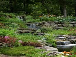 Backyard Swimming Ponds - backyard ponds waterfalls pictures garden ponds and waterfalls