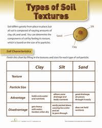 soil texture worksheet education com