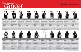 most common types of cancer infographic infographicspedia