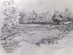 another fun medium for landscape sketching art in wetlands