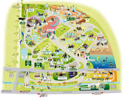 National Zoo Map London Zoo Map Jpg 1200 985 Theme Parks Pinterest