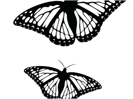 coloring page butterfly monarch monarch butterfly coloring page monarch butterfly coloring pages