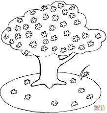 blooming cherry tree coloring page free printable coloring pages