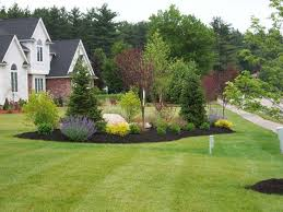 Landscape Architecture Ideas For Backyard Best 25 Acreage Landscaping Ideas On Pinterest Landscape Design