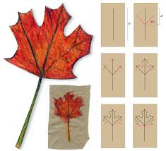 image gallery of simple leaf drawing for kids