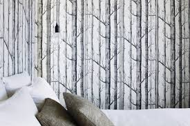 black and white birch tree wallpaper best birch tree wallpaper