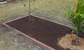 how to grow vegetables bunnings warehouse