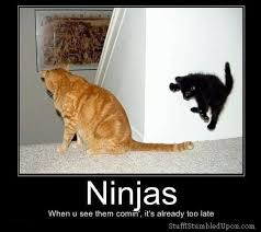 Ninja Memes - 25 most funny ninja meme pictures and photos that will make you laugh