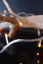 Battery Operated Light Strings by Fairy Lights Led Strings Party Lights U0026 Lighted Branches