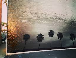 blogtown a new palm tree mural on abbot kinney the sun was setting just as i arrived giving the brand new put up this very day mural a golden sheen selfie takers were already lining up for their turn