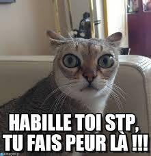 Chat Meme - habille toi stp tu fais peur l罌 chat meme on memegen