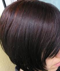 naturcolor 5n light burdock naturcolor hair color in 2016 amazing photo haircolorideas org